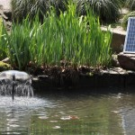 DIY Water Feature Kits