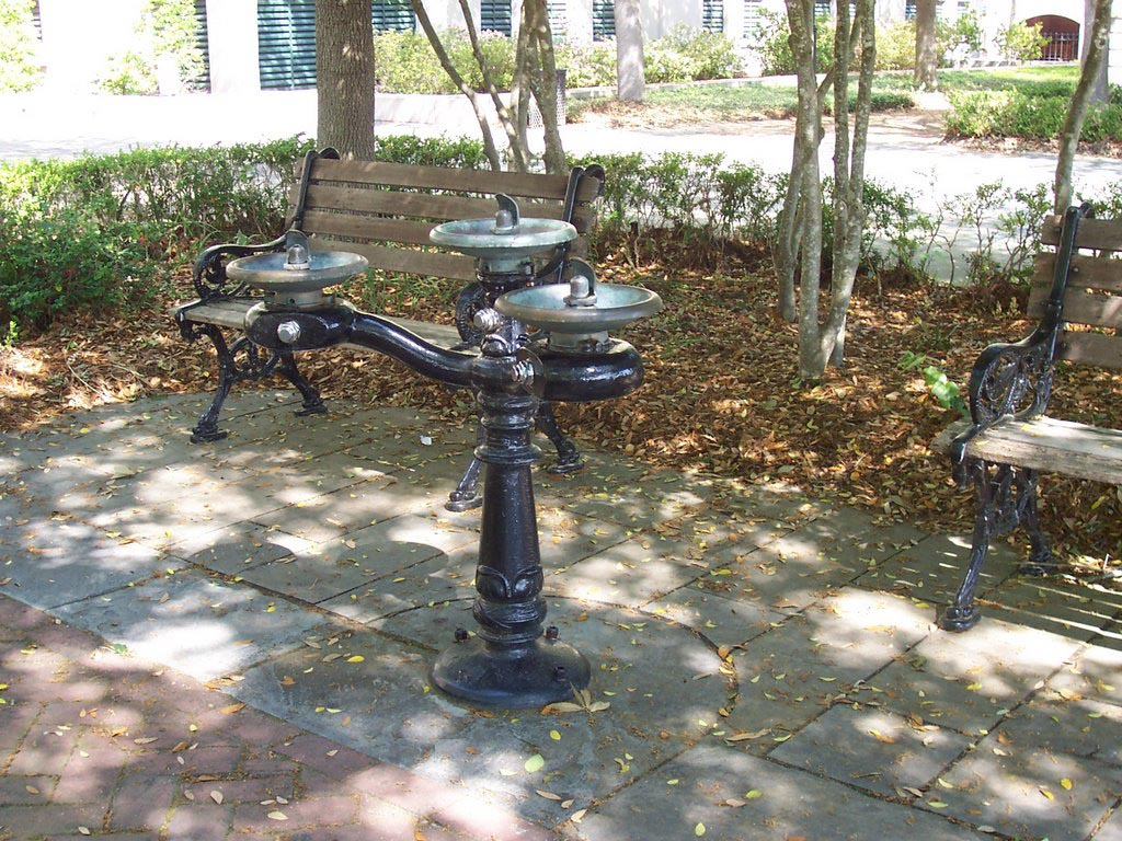 Backyard water drinking fountains backyard design ideas for Backyard water fountains