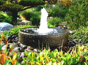 Building Garden Fountain Pond