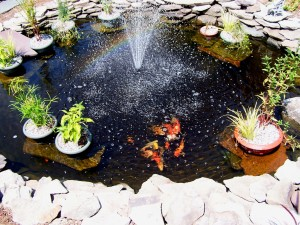 Garden Pond Fountain Design