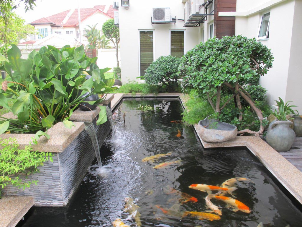 Garden Ponds with Fountains