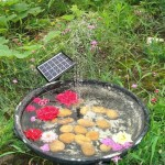 Solar Powered Garden Fountain Pond Pump Kit