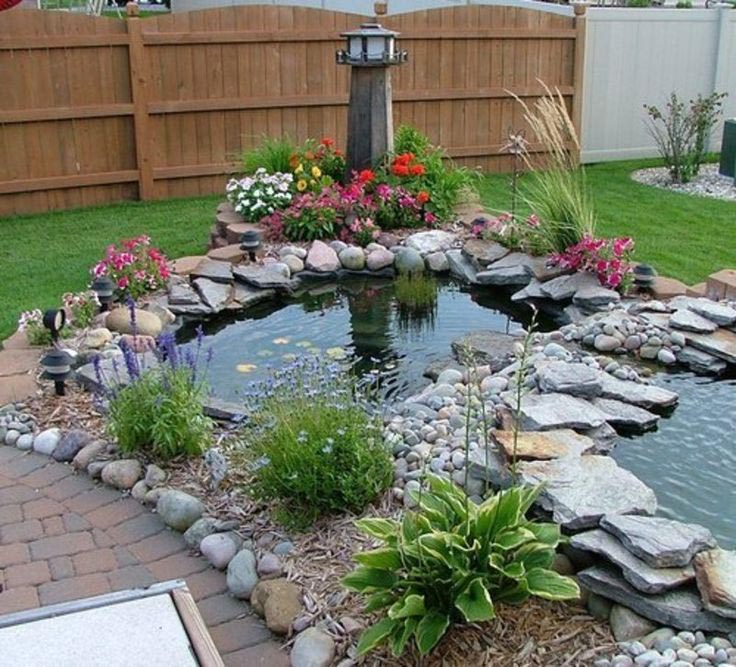 Best Fish For Garden Ponds Backyard Design Ideas