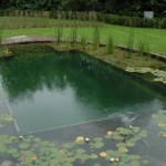 DIY Natural Swimming Pool Construction