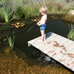 DIY Natural Swimming Pools