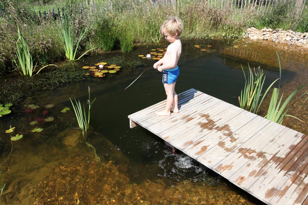 Diy natural swimming pools backyard design ideas for Diy small pool