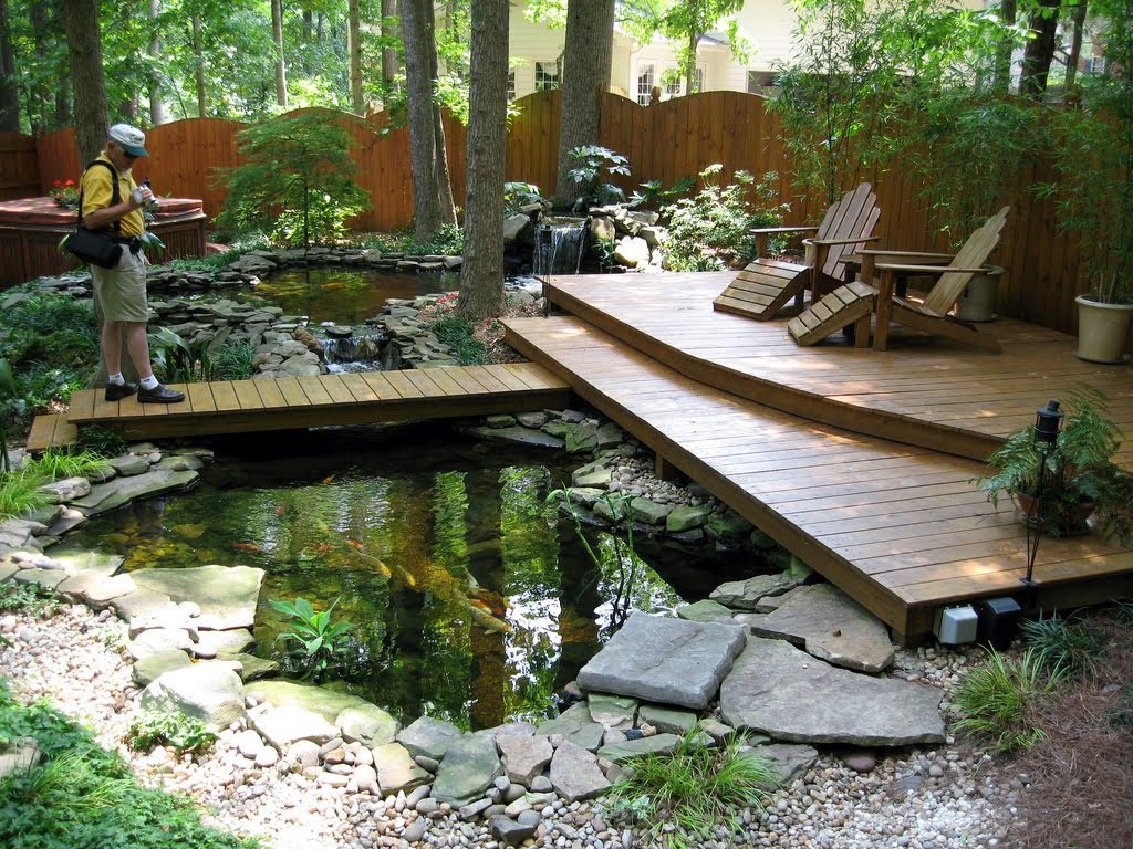 Fish Ponds for Small Gardens