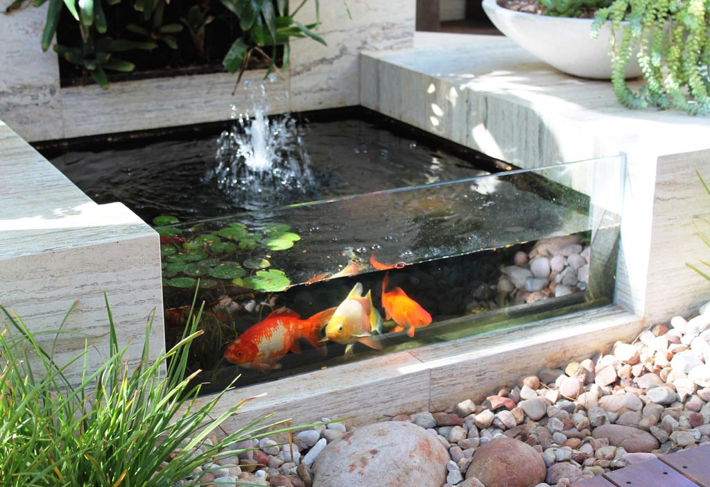 Garden Fish Pond Design