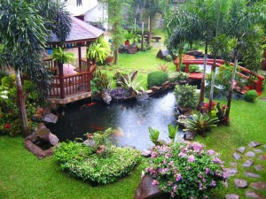 Garden with Fish Pond