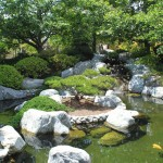 Japanese Fish Ponds Gardens