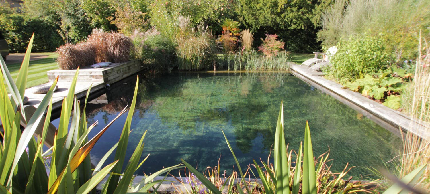 Natural swimming pool diy backyard design ideas for Small natural pond