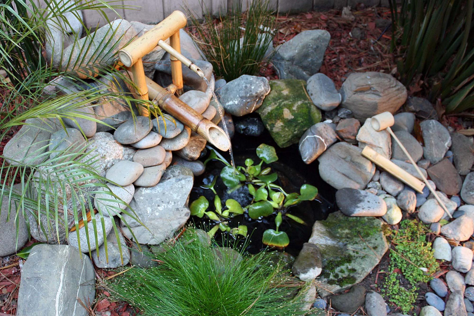 Small backyard ponds and fountains backyard design ideas for Pond with fountain