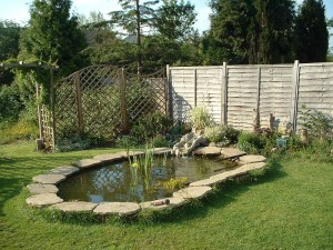 Small Garden Fish Ponds