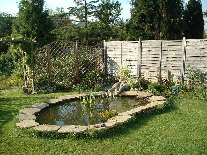 Small Garden Fish Ponds Backyard Design Ideas