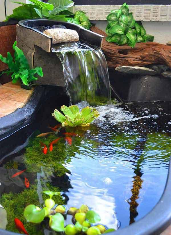Small garden pond fish backyard design ideas for Small garden fish pond designs