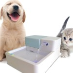 Small Pet Water Fountain