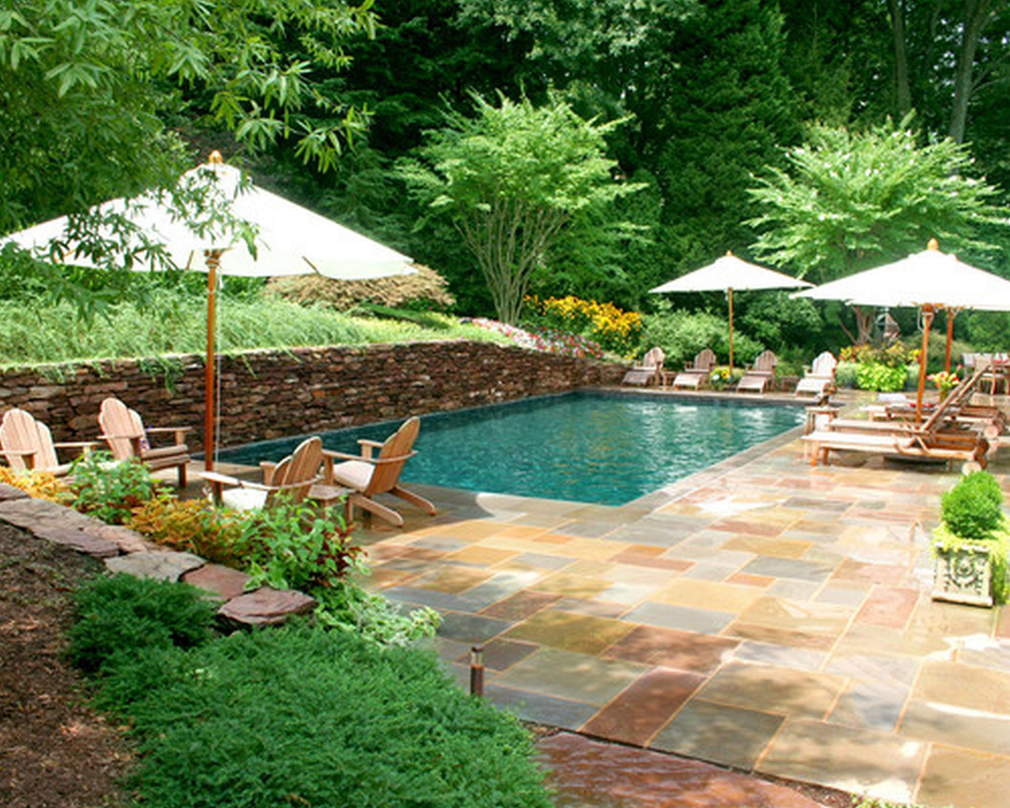 Backyard Pool Design Tool :  pools tool with swimming pool killer house backyard design with curve